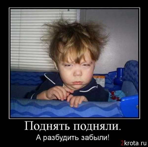 смешные картинки с пожеланиями с добрым утром