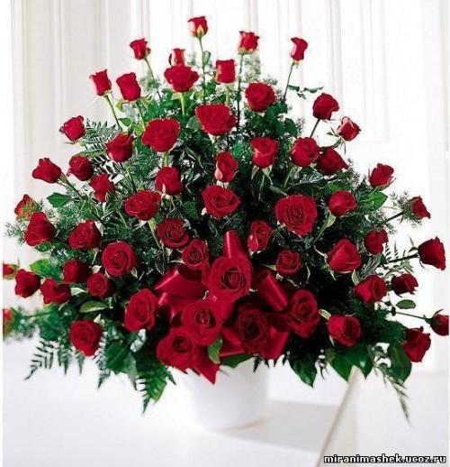 Фото девушки с большим букетом роз на аву вконтакте