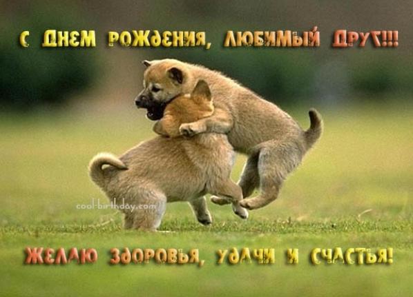 1368200991_th_3525b0a5904eb56672671418d8